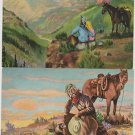 (2) Vintage L.H Dude Larsen Postcards