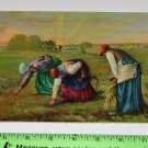 "Vintage Litho Art Print ""Women Harvesting Crops Wheat"""