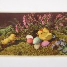 Vintage Postcard  Hen & Chicks with colored dyed eggs art