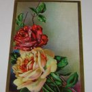 Vintage Postcard A Red and A White Rose & Greenery