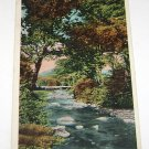 Vintage Postcard Jackson NH White Mountains Wildcat River