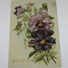 Vintage Postcard Best Wishes Purple Flowers PM'd 1908