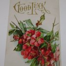 "Vintage Postcard ""Good Luck"" Red Flowers"