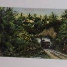 Vintage Postcard Jamaica - Near Troja St Catherine Circa 1910