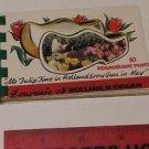 "Souvenir of Holland Michigan ""TULIP TIME"" 10 Kodachrome Prints booklet"