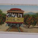 Vintage Postcard The Limited Passing Through Orange Groves California