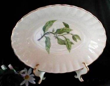 Vintage W.S. George Orange Blossom Veggie Bowl 2522