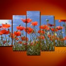 Gorgeous Oil Floral Painting on Canvas Very Pretty Flowers (+Frame) FL5-010