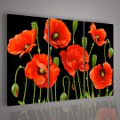 Red Flowers On Black Canvas Floral Oil Painting Home Decor FL3-138