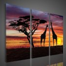 Wall Decoration African Art on Canvas Oil Painting (+Framed) AR-151