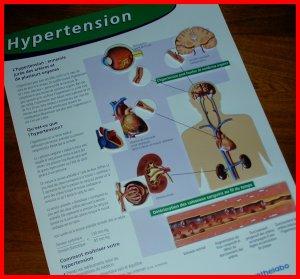 Sculptured Poster HYPERTENSION Heart Brain Kidneys Eyes & CIBA Symposia NETTER