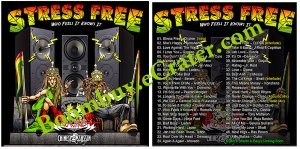 Chinese Assassin: Stress Free