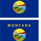 2 Montana State Flag Stickers Decals Sticks to Almost Anything