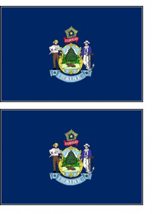 2 Maine State Flag Stickers Decals Sticks to Almost Anything