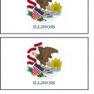 2 Illinois State Flag Stickers Decals Sticks to Almost Anything