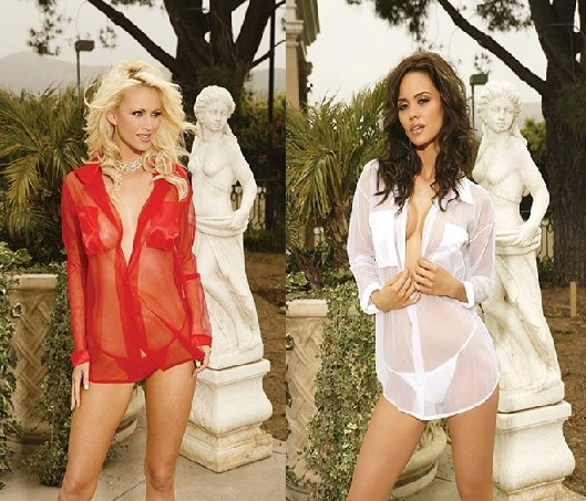 Sexy Sheer Nightshirt and panty set sizes S-L Available in several colors