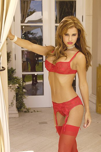 Red Chiffon 3 Piece Bra, Panty and Garter Set Sizes 40-44