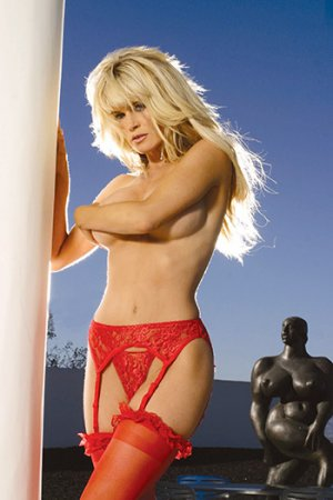 Lace Garterbelt and Thong Set Various Colors Queen