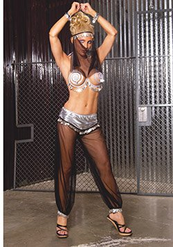 Belly Dancer 4 Piece with Spiral Bra Costume Black/Silver Sizes S-L