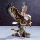 31809 Eagle Landing