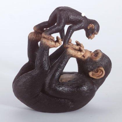 35010 Monkey Playing With Baby Monkey