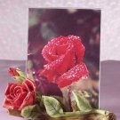 31158 Alabastrite Red Roses Photo Frame