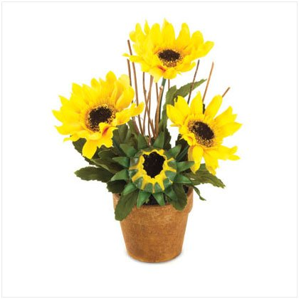 36232 Sunflower Bouquet
