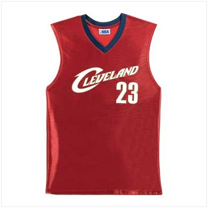 38151 NBA Lebron James Jersey-X Large