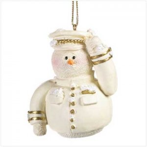 37226 Snowberry Cuties Air Force Ornament