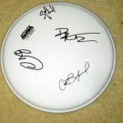 DAVE MATTHEWS BAND     autographed     SIGNED   Drumhead          *PROOF