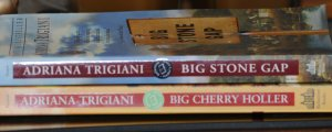 Big Stone Gap and Big Cherry Holler 2 Book Set - by Adriana Trigiani