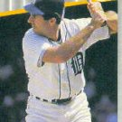 1989 Fleer #138 Fred Lynn ( Baseball Cards )