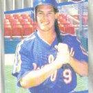 1989 Fleer #38 Gregg Jefferies