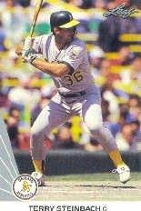 1990 Leaf 252 Terry Steinbach
