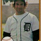 1981 Fleer #459 Steve Kemp ( Baseball Cards )