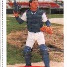 1991 Classic/Best 254 Robert Fitzpatrick