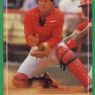 1988 Score 358 Tom Pagnozzi RC