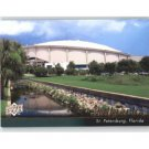 2010 Upper Deck #567 Tampa Bay Rays