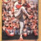 1987 Topps 542 Ricky Horton