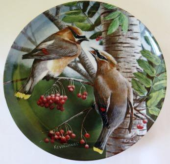 Cedar Waxwing Birds of Your Garden Collector Plate