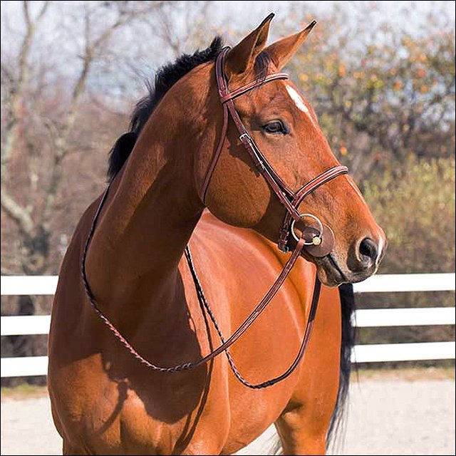 FULL HORZE HARRISON HORSE PADDED STITCHED BRIDLE W/ LACED REINS LIGHT BROWN