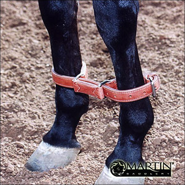MARTIN SADDLERY TRAINING HORSE HARNESS LEATHER HOBBLES