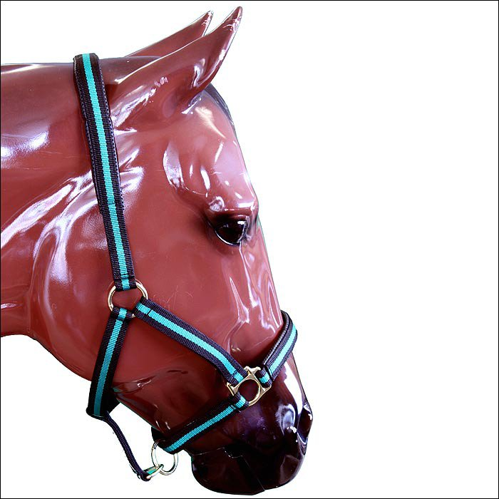 "GREEN WEAVER WESTERN PADDED SNAP HORSE HALTER 1"" LARGE HORSE DRAFT"