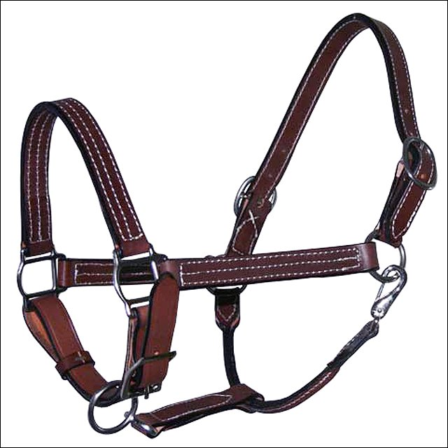 "1"" HILASON WESTERN HORSE DOUBLE STITCHED LEATHER BROWN HALTER W/ SS HARDWARE"