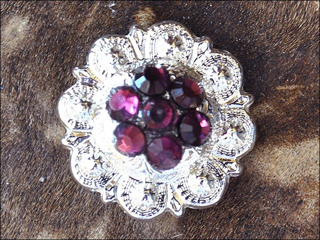 SET OF 8 CRYSTAL AMETHYST BERRY CONCHO RHINESTONE HEADSTALL SADDLE BLING COWGIRL
