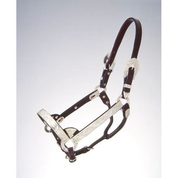 TOUGH 1 HORSE ROYAL KING SILVER LEATHER BRIGHT CUT EDGE SHOW HALTER DARK OIL
