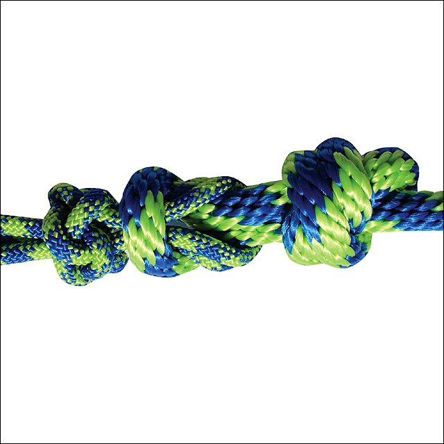 PROFESSIONAL CHOICE DURABLE HORSE NYLON ROPE HALTER W/ MATCHING LEAD ROYAL LIME