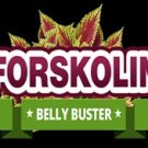 Pure Natural Forskolin Fat Burner Belly Buster
