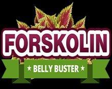 Pure Natural Forskolin Fat Burner Belly Buster