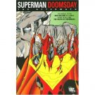 Superman: Doomsday: The Aftermath TPB